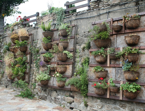 jardin pared vertical