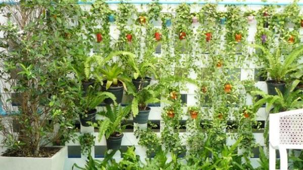 jardines verticales comprar