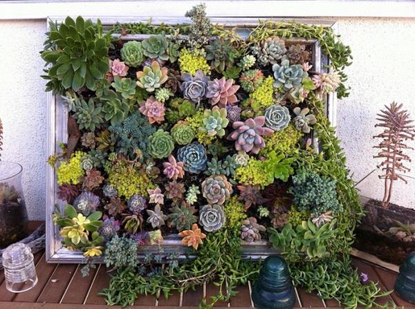 jardines verticales como hacerlos