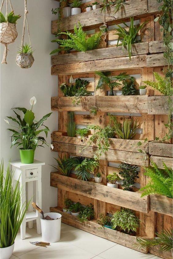 jardin de pared interior
