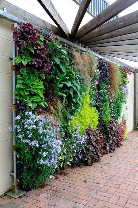 muro verde precio