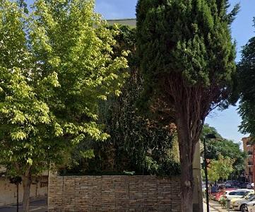 jardin vertical guadalajara