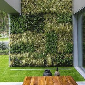 pasos para hacer un jardin vertical