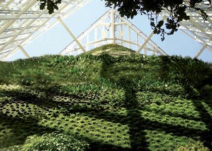 jardin vertical en madrid